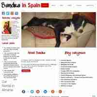 Spain Web Design and more by Gandy-Draper | Exactly what I wanted - thank you so much!